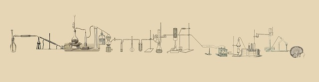 実験の場を作り、アイデアを活用する